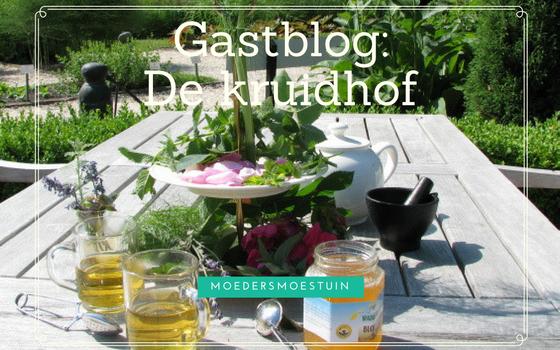 Gastblog de Kruidhof Buitenpost