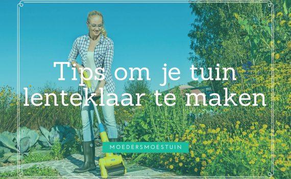 tips tuin lenteklaar maken