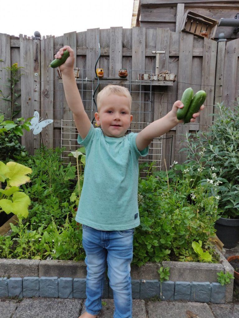 Start nieuwe moestuinseizoen oogst