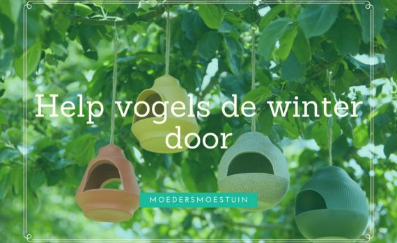 help vogels de winter door
